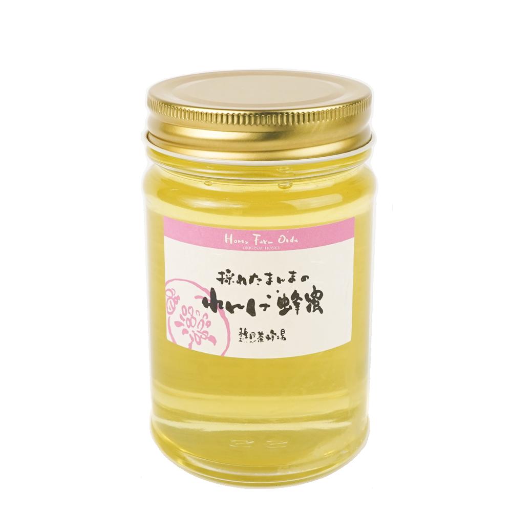 れんげ蜂蜜 種田養蜂場